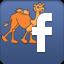 Facebook Kyros T Camel